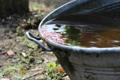 entretenir un système de récupération d'eau de pluie sur gouttière.